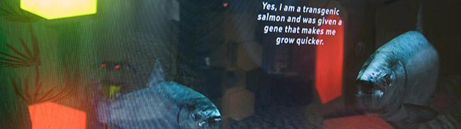 Interaktive Fische - 3D